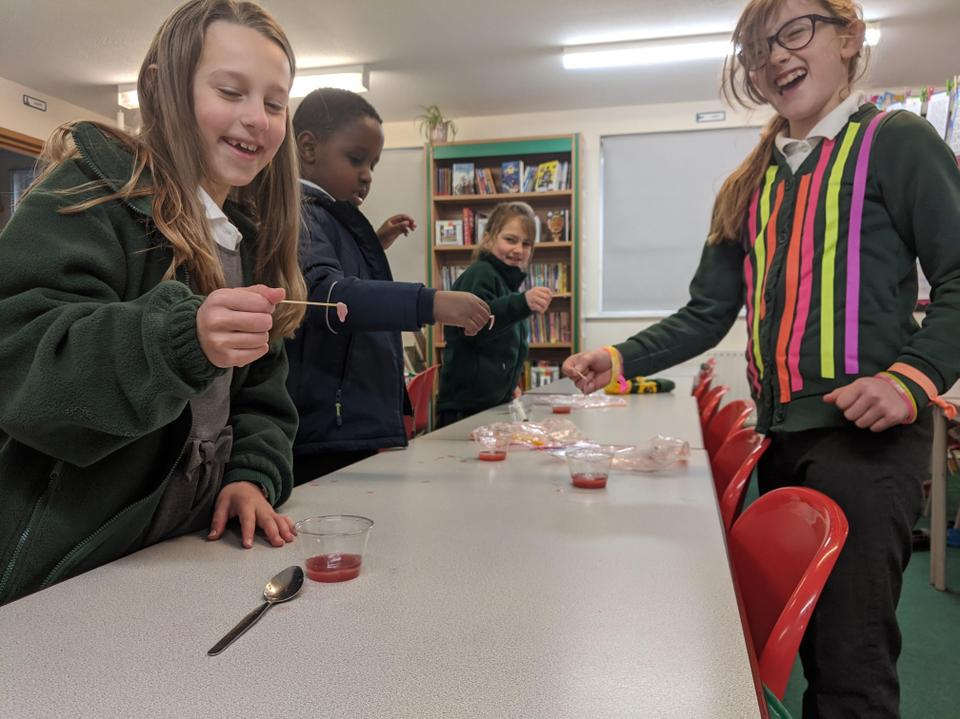 Extracting DNA from strawberries like Rosalind Franklin
