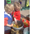 Adding lemons, oranges and limes to the potion.