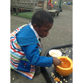 Investigating pumpkins