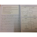 Year 5 Reading comprehension