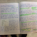 Year 6 Letter writing
