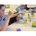 Year 6 - Experimenting