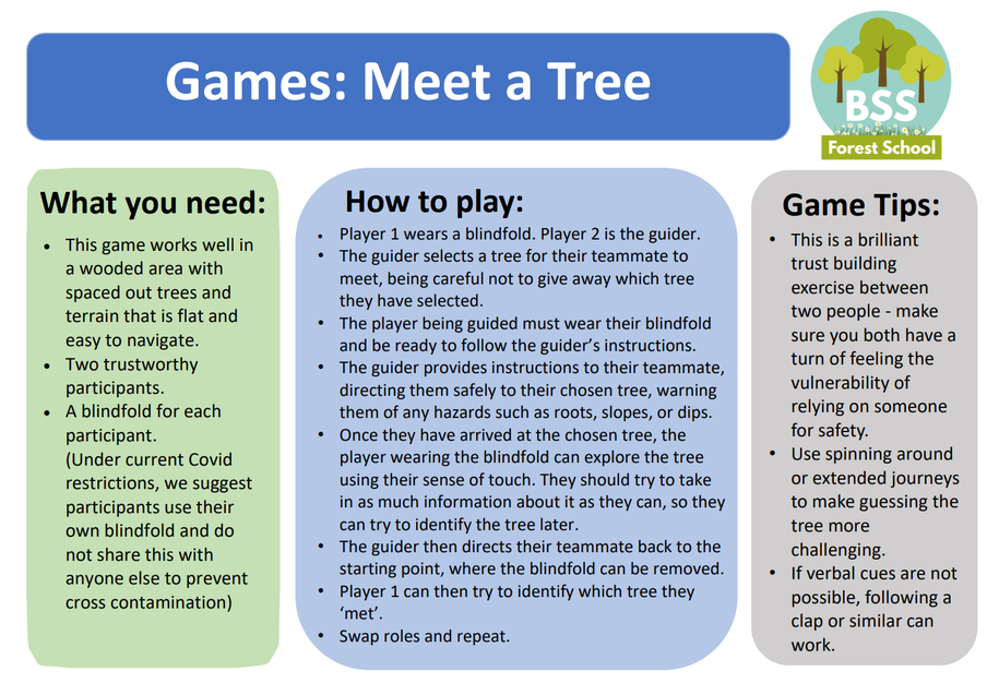 Screenshot of Meet a Tree PDF.  Text in Green, Blue and Grey boxes, BSS logo top right
