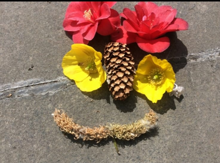 Flower face with pine cone nose+catkin smile Anon