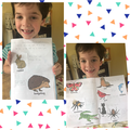 Teddy's amazing animal measurements.