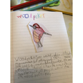 Archie's beautiful Woodpecker creation