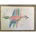 Tom C designed and described his own dragon