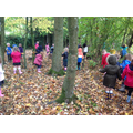 Year 1 visit the woods on their welly walk