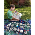 Daniel P's family of pet rocks reading the Beano