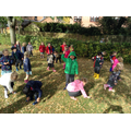 Cherry Class looking for Autumn leaves