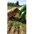 Callum and Isla practising their excavation skills