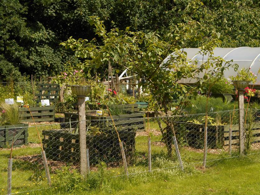 Grounds & Gardens for Forest School and Land Based Studies