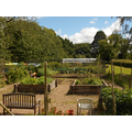 Horticulture in Partnership with J&S Opening Doors