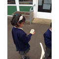 Year 1 compas directions- geography