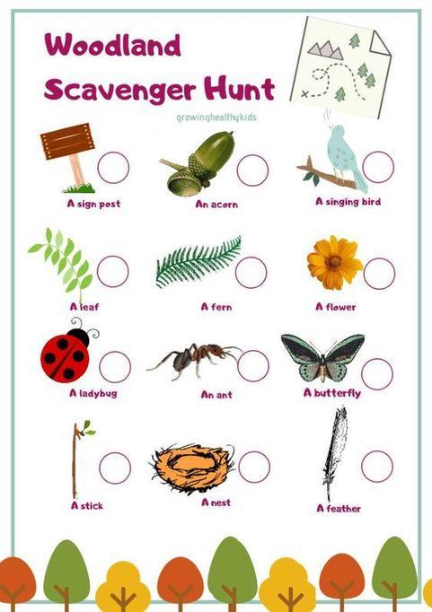 Go on a woodland scavenger hunt