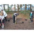 Wildlife club hard at work planting shrubs.