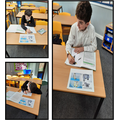 Pupils in Year 6 classifying animals and practising their sketching skills...