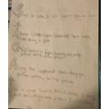 Louis' draft poem