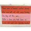 Mrs McNerney's limerick workshop