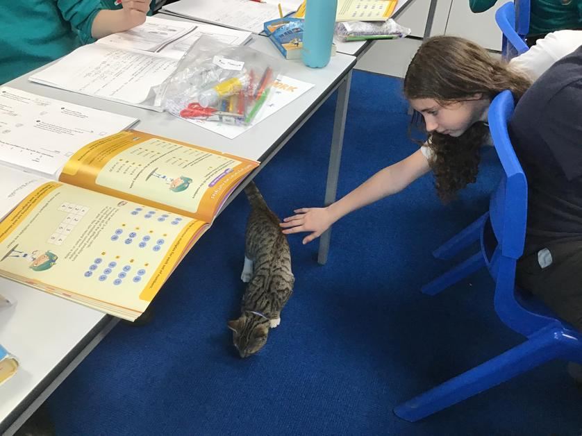 Helping with maths