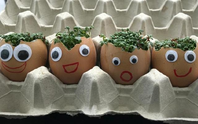 From The National Children's Garden Week