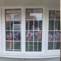 Max's window