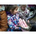 Snake holding!