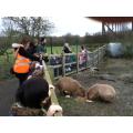 Wow! Capybara!