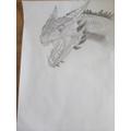 Fantastic dragon sketch