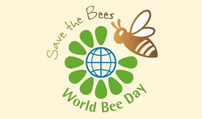 World Bee Day 20th May 2019