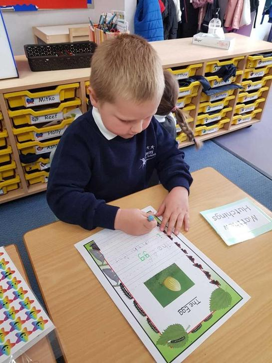 Writing our non-fiction book.