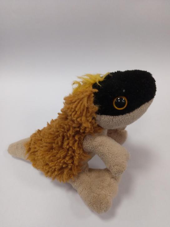 Askaraptor