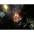 Campfire fun!