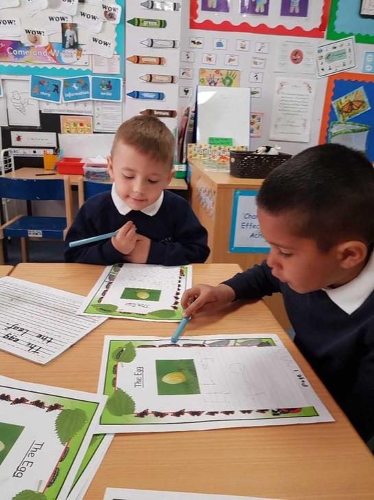 Writing a book about caterpillars.
