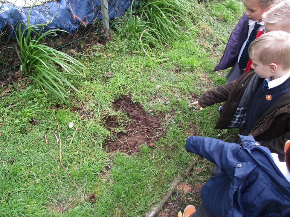 We found a giant footprint.