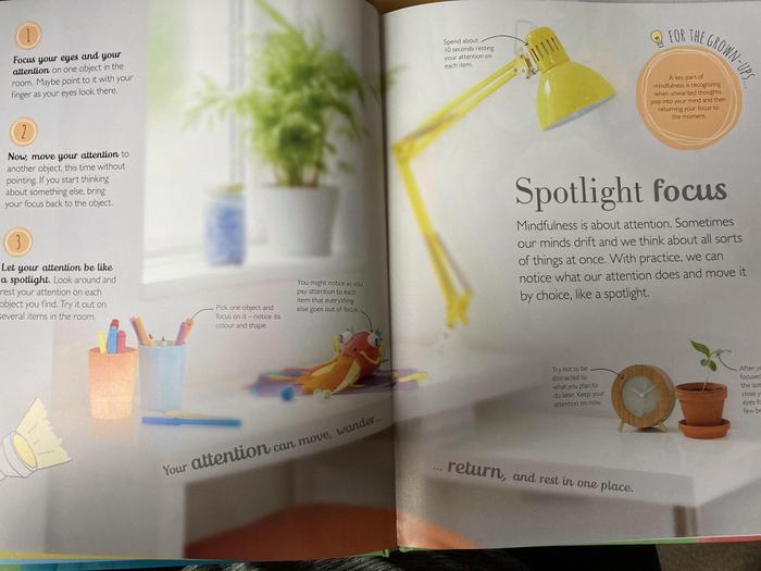 Spotlight focus