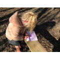 Collecting different textures by using crayons to create rubbings