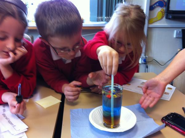 Class 3 thinking scientiifically lesson