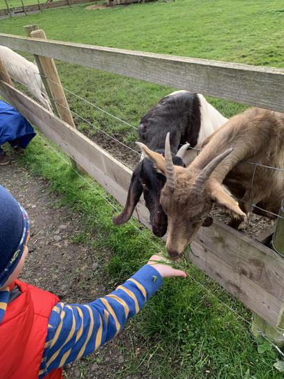 We met lots of different animals.