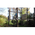 9.5.17:  High Ropes
