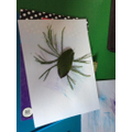 Harry and Isla collected some things in the garden and made a spider!