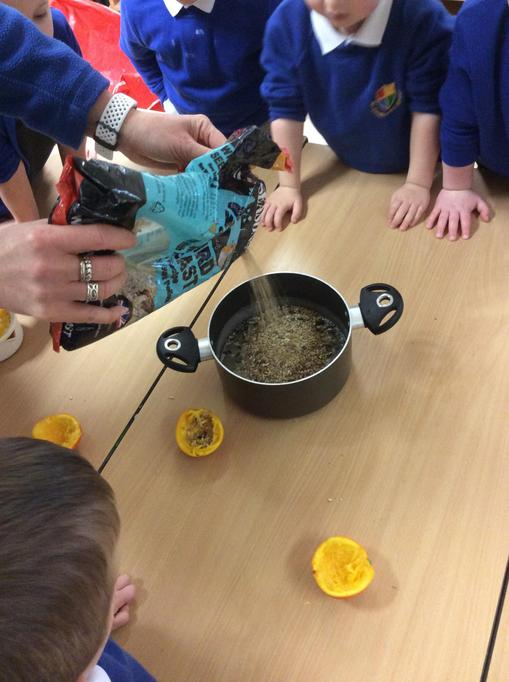 Then we added the bird seed to the mixture.