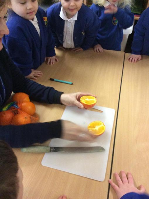 We cut the oranges in half.