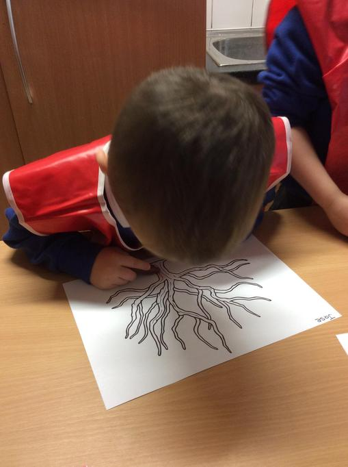 We coloured in the tree trunk and branches brown.