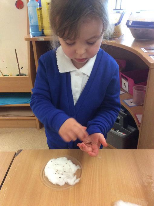 Robyn carefully sprinkled on her seeds.