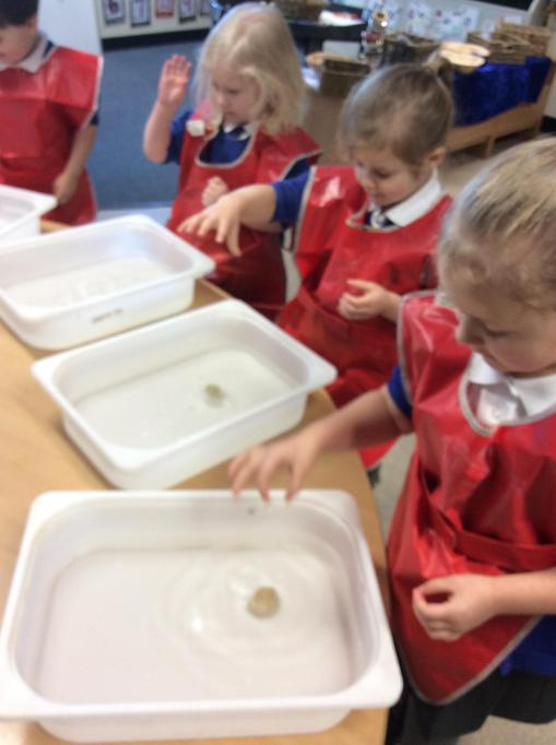 We dropped the pebble in the water. It sunk!