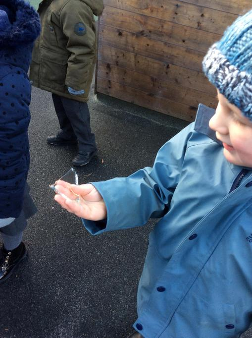 Alfred looked closely at the ice.