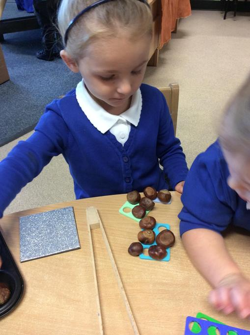 Olivia used the numicon to count her conkers.