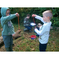 We held our own conker tournament.
