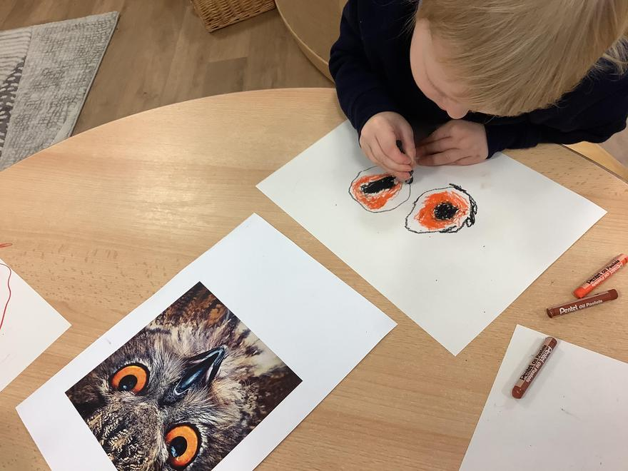 Using oil pastels to create representations of owls.